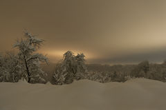 Den Snow täckte vintern landskap på natten Arkivbilder
