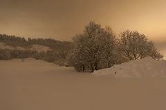 Den Snow täckte vintern landskap på natten Arkivbild
