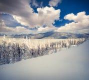 Den soliga vintermorgonen i de dimmiga bergen med snö kröp ihop fi Arkivfoto