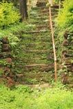 Den spökade trappan fördärvar in av gammal trädgård Royaltyfria Bilder