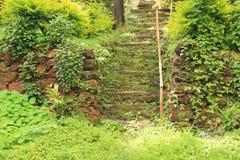 Den spökade trappan fördärvar in av gammal trädgård Royaltyfri Bild