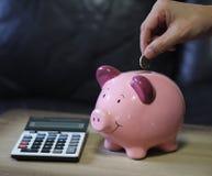 Den sparande piggy myntbanken för pengar med räknemaskinen finansierar investering Royaltyfri Foto