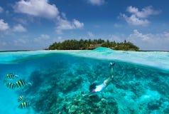 Den Sportive flickan snorklar i turkosvatten över en korallrev i Maldiverna royaltyfria foton