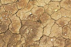 Den spruckna jordningen, jordning i torka, jordtextur och torr gyttja, arkivbilder