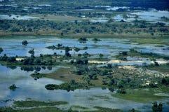 Den största floden efter 46 år har slågit Kalahari-öknen Royaltyfria Foton