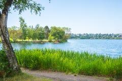 Den stads- fritids- sjön parkerar fotografering för bildbyråer