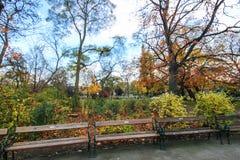 Den Stadtpark Wien staden parkerar Arkivfoto