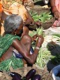 Den stam- kvinnan säljer nya grönsaker Royaltyfri Bild