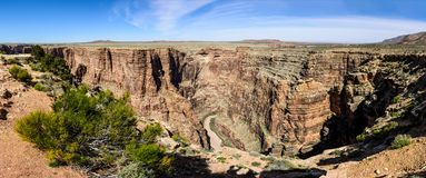 Den stam- Little Colorado River navajoen parkerar fotografering för bildbyråer