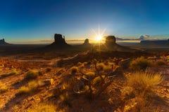 Den stam- monumentdalen parkerar, Arizona, USA Fotografering för Bildbyråer