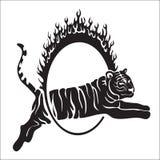 Den stam- tigern hoppar vektoröversiktsillustrationen Royaltyfri Foto