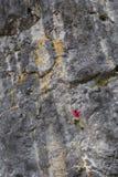 Den starka flickan klättrar på en vagga som gör sportar som klättrar i natur Royaltyfri Bild