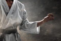 Den starka kampsportkämpen poserar fotografering för bildbyråer
