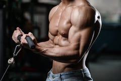 Den starka och stiliga idrotts- unga mannen tränga sig in abs och biceps arkivbild