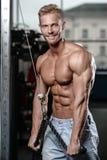 Den starka och stiliga idrotts- unga mannen tränga sig in abs och biceps royaltyfria bilder