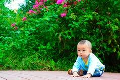 Den startande linjen av liv Royaltyfri Fotografi