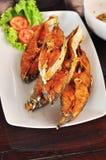 Den stekte fisken i maträtt, dekorerar med grönsaker Royaltyfri Fotografi