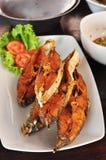 Den stekte fisken i maträtt, dekorerar med grönsaker Royaltyfria Bilder
