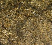 Den steniga botten av floden Royaltyfri Foto