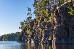 Den steniga kusten av ön av Valaam som är bevuxen med, sörjer trädet Arkivbild