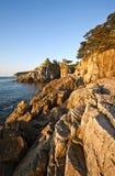 Den steniga kusten av det östliga havet per ljus solig morgon Arkivbilder
