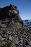 Den steniga kusten av Snaefellsnes, Island Royaltyfri Bild