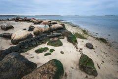 Den steniga kusten med vaggar och mossa fotografering för bildbyråer