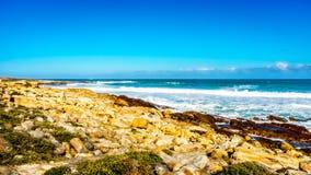 Den steniga shorelinen av Atlanticet Ocean mellan udde av bra hopp och Platboom sätter på land Fotografering för Bildbyråer