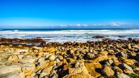 Den steniga shorelinen av Atlanticet Ocean mellan udde av bra hopp och Platboom sätter på land Arkivfoton
