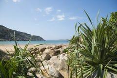 Den steniga stranden är en lös strand med kakturs Arkivfoto
