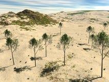 Den steniga terrängen med sand och träd Royaltyfri Foto