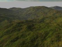 Den steniga terrängen som täckas med grönska i mörkret Royaltyfria Foton