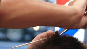 _ Den stilfulla mannen gör en frisyr på barberaren stock video