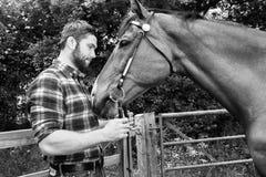 Den stiliga amerikanska cowboyen, ryttare med den kontrollerade rutiga skjortan och jeans daltar och älskar hans häst royaltyfri fotografi
