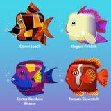 Den stiliserade fisken är fyrkantig Royaltyfri Fotografi