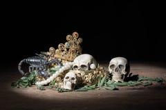 Den stillebenskallen och skorpionen med guld- smycken för skatt, piratkopierar Royaltyfria Foton