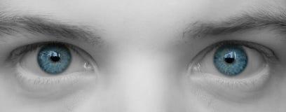 den stora blueclosen eyes upp arkivbild