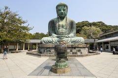 Den stora Buddha, Daibutsu, i Kamakura, Japan Fotografering för Bildbyråer