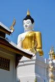 Den stora Buddhaen avbildar och slösar skyen Royaltyfri Foto