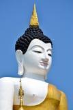Den stora Buddhaen avbildar och slösar skyen Royaltyfri Fotografi