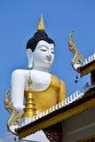 Den stora Buddhaen avbildar och slösar skyen Royaltyfri Bild