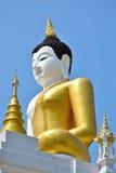 Den stora Buddhaen avbildar och slösar skyen Arkivbild