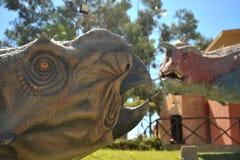 Den stora dinosaurien parkerar, var spår av dessa forntida reptilar Royaltyfri Fotografi