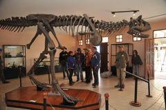 Den stora dinosaurien parkerar, var spår av dessa forntida reptilar Royaltyfri Bild