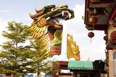 Den stora draken Arkivbild