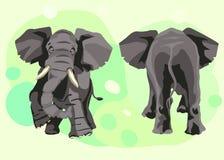 Den stora gråa indiska elefanten går framåtriktat stock illustrationer