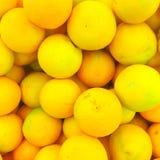 Den stora gula citronen ligger på en blå platta på en gul bakgrund Royaltyfria Foton