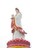 Den stora härliga gudinnan av förskoning (guan yin) på den vita backgroen Royaltyfria Bilder