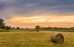 Den stora höbalen rullar i ett frodigt grönt fält Royaltyfria Foton