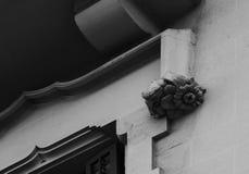 Den stora head fågeln bak blomman Royaltyfri Foto
